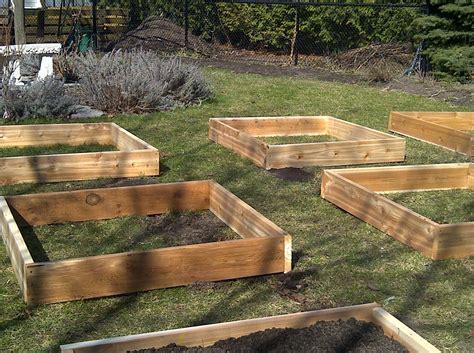 building a raised garden raised garden bed ideas for gardening way home