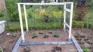 Tomaten Im Hochbeet : gem se im garten angepflanzt unser kleiner nutzgarten wir bauen dann mal ein haus ~ Whattoseeinmadrid.com Haus und Dekorationen