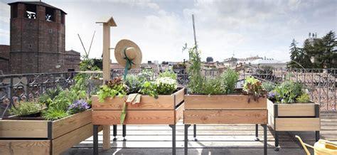 come fare l orto sul terrazzo come fare l orto sul balcone guide