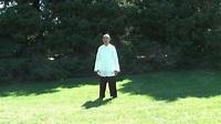 Tai Chi Qigong Shibashi Set 1 - by Master Wing Cheung - YouTube