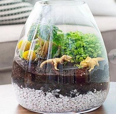 DIY.สวนดึกดำบรรพ์ในโหลแก้ว ~ I CAN DO