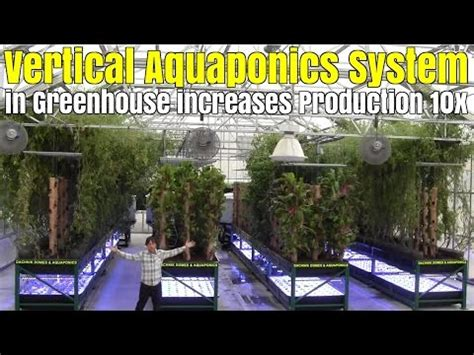 vertical aquaponics system  bamboo towers  greenhouse