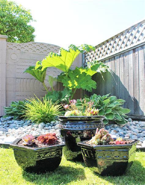 small succulent garden ideas photograph top  diy outdoor