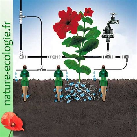 Irrigation Jardin Goutte Goutte by Arrosage Goutte Goutte Jardin