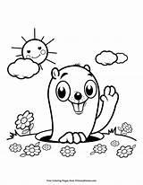 Groundhog Coloring Printable Primarygames Sunshine Books Colorful sketch template