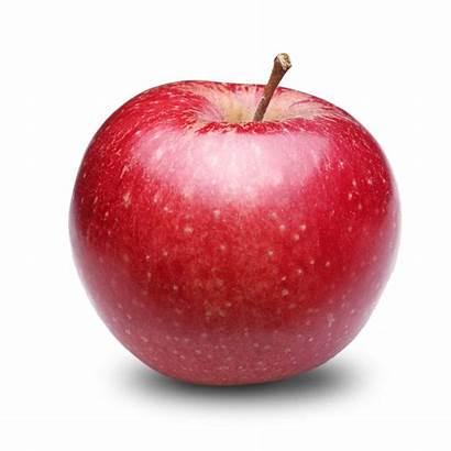 Apple Fruit Transparent