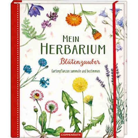 Mein erstes Herbarium  Bäume bestimmen und Blätter