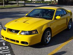 2000 Ford Mustang SVT Cobra - Pictures - CarGurus