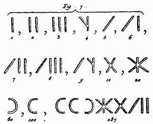 10 En Chiffre Romain : les chiffres romains coop 39 icem ~ Melissatoandfro.com Idées de Décoration