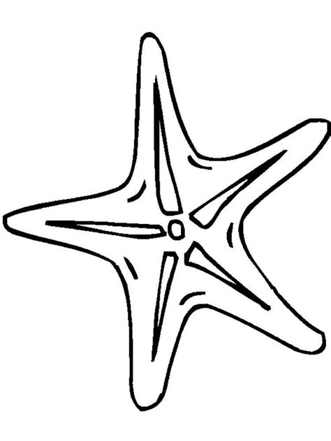 starfish coloring pages    print