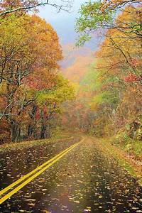 Rainy day Road | ¿Hacia dónde voy?↗↘↙↖ | Pinterest ...