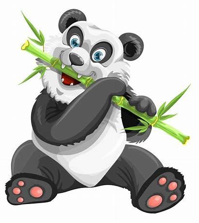 Panda Vector Transparent Cartoon Clipart Pngpix Bear