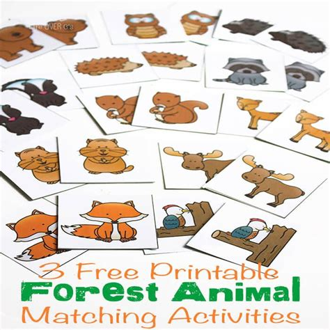 3 free printable forest animal matching activities 595 | 972bb8c61e269750e7b98f5bed157383