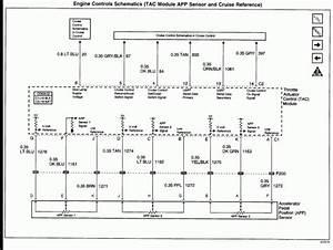 6 0 Powerstroke Serpentine Belt Diagram