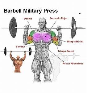 Barbell Military Press | Shoulders | Pinterest | Military
