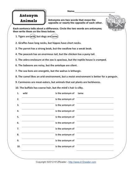 17 best images of synonym antonym worksheet 6th grade