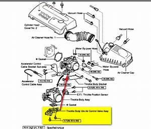 Vacuum Diagram 2003 Toyota Matrix  Toyota  Auto Parts