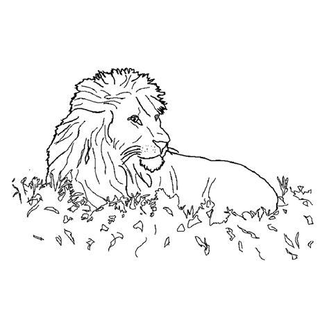 Kleurplaat Leeuw En Tijger by Leuk Voor Deze Leeuw Rust Uit