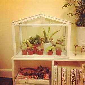 Kleines Gewächshaus Ikea : my new mini greenhouse from ikea garden pinterest ~ Michelbontemps.com Haus und Dekorationen