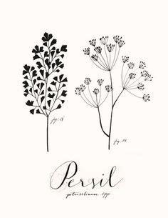 Möbel Skizzen Zeichnen by Auf Diese Seite K 246 Nnen Sie Blumen Malen Lernen Es Ist
