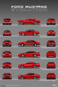 Ford Mustang Evolution: 1964 – Present | Ford mustang, Mustang, Classic cars