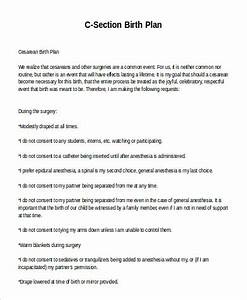 sample birth plan 9 examples in word pdf With cesarean birth plan template
