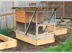 Organic Gardening Coop Thoughts Blog