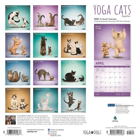 announcements plato calendars