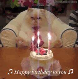 Happy Birthday To You GIF - Find & Share on GIPHY