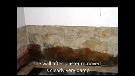 rising damp   cure youtube