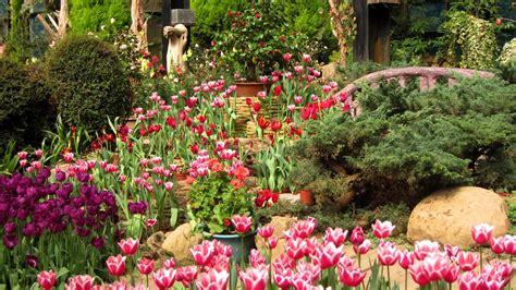 1920x1080 beautiful tulips garden download 1920x1080 beautiful tulips garden wallpaper