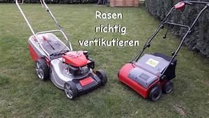Vertikutieren Wann Am Besten : diy rasen richtig vertikutieren youtube ~ A.2002-acura-tl-radio.info Haus und Dekorationen