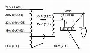 Wiring Manual Pdf  100 Watt Metal Halide Wiring Diagram