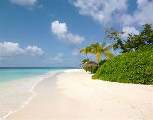 Most Beautiful Tropical Beach In The World - Hot Girls ...