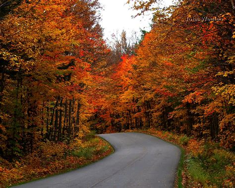 Autumn Path Wallpaper Free Wallpapers