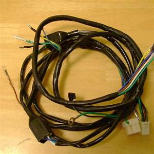 Honda Fl250 Odyssey Complete Wiring Harness 81 To 84 New