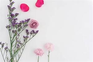 Fondo blanco con flores bonitas y pétalos rosas Descargar Fotos gratis
