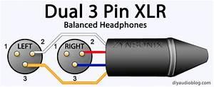 Diy Audio Electronics From Zynsonix Com  Headphone