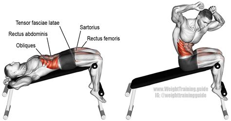 Chair Sit Ups Muscles by Decline Twisting Sit Up Muscles Worked And