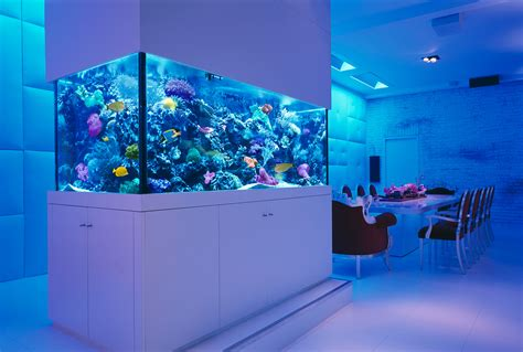 fish aquariums 30 incredibly awesome ideas to beautify your home with
