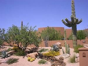 Outdoor & Gardening Mounding Desert Landscaping Designs