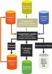 Jatropha Curcas Biodiesel Production Flow Chart   Source