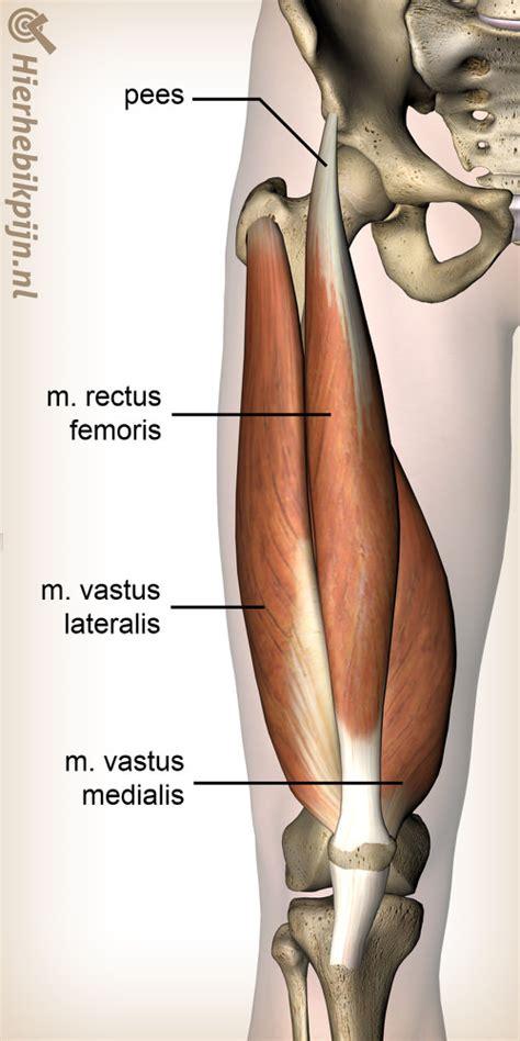 Pijn in de armen en benen: waar komt het door?