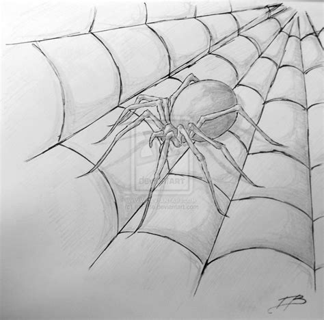 spider web drawing with spider spider drawing by ilaflute on deviantart