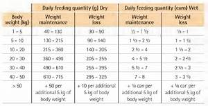 Overweight Cat Chart Cat And Dog Lovers