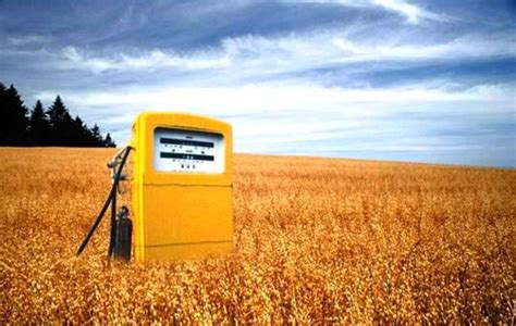 3. биотопливо. биоэтанол. метанол. биодизель. водород. электричество