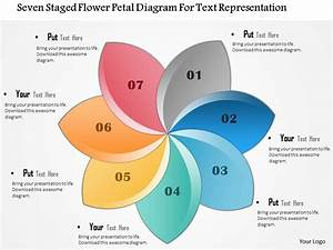 1114 Seven Staged Flower Petal Diagram For Text