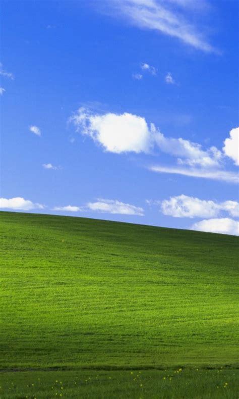 wallpaper bliss landscape windows xp stock  nature