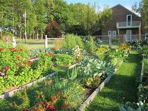 17 High Yield Vegetables To Grow In Small Space Gardens