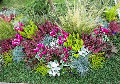 Garten Herbst Bepflanzung by Herbstbepflanzung Mit Ziergras Und Alpenveilchen
